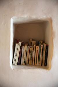Les Pinsons detail niche a livres